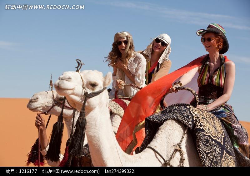骑着骆驼的外国美女图片编号:1216177