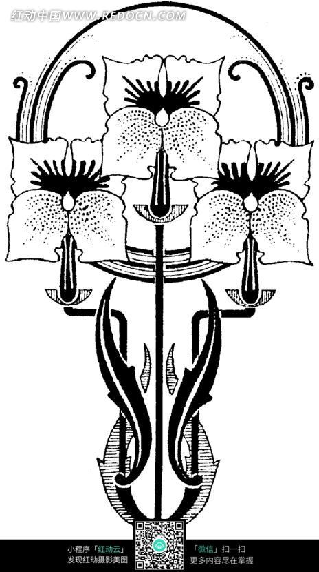 手绘创意花朵花瓣插画图形图片-花纹|花边|线条