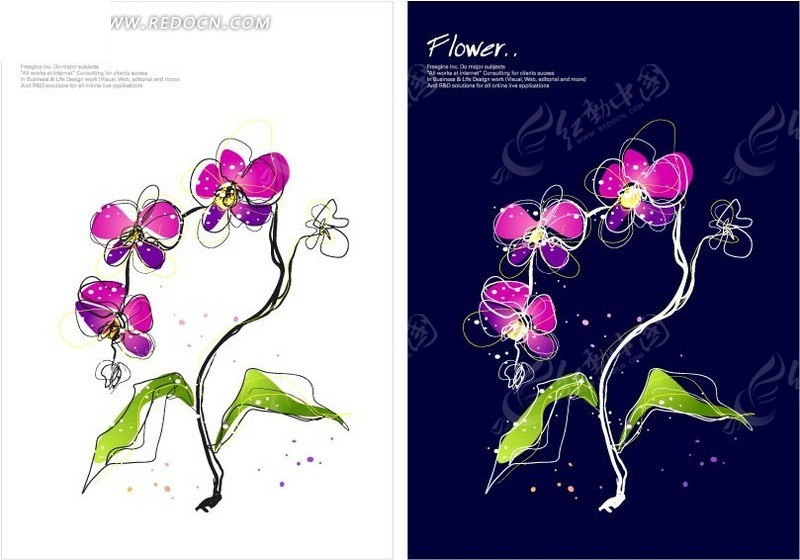 手绘美丽的紫色蝴蝶兰 花纹背景矢量图下载 编号 1663329 -手绘美丽的